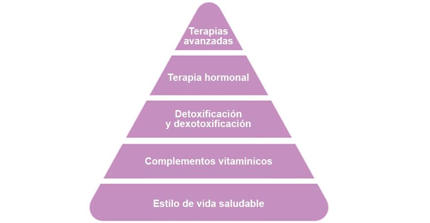Pirámide de nutrición y terapias de un plan antienvejecimiento